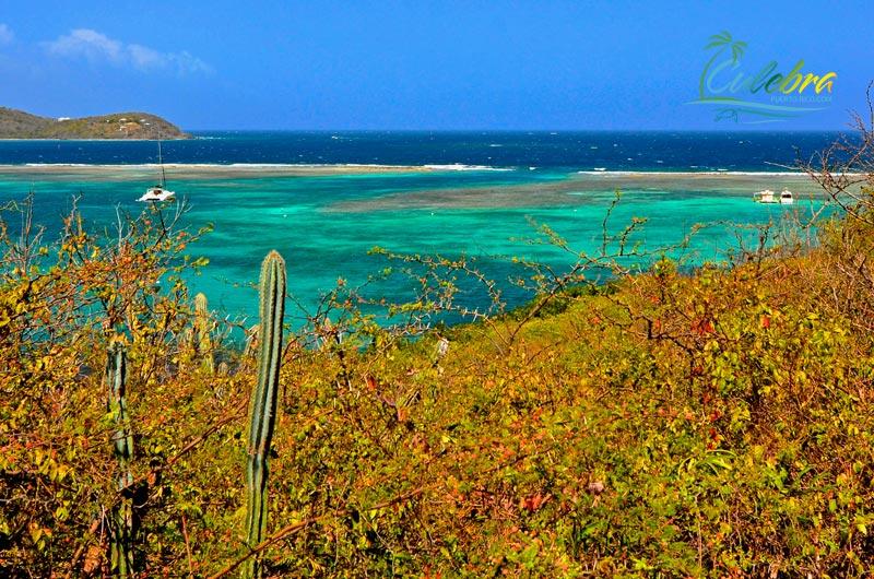 Culebra Island, Puerto Rico