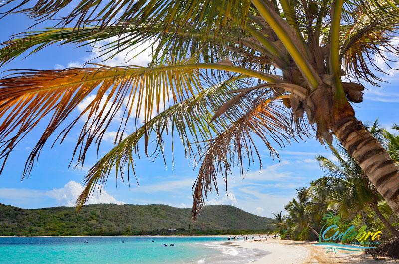 Flamenco Beach - Culebra - Best Beach in Puerto Rico